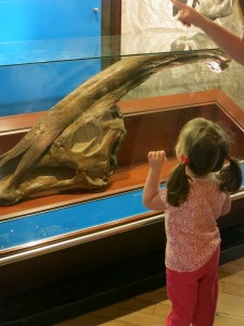 Emerson inspecting the exhibits at the Natural History Museum in London