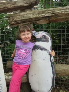 Emerson's sure the pictured penguin must be from the Falklands...