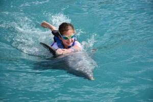 Dolphin Swim! (Grand Cayman, November 2016)